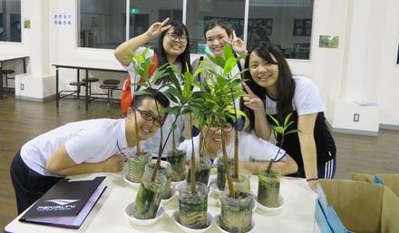 6月熱帯植物マングローブの世界スクーリング|八洲学園大学国際高等学校