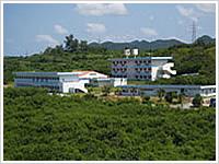 八洲学園大学国際高等学校